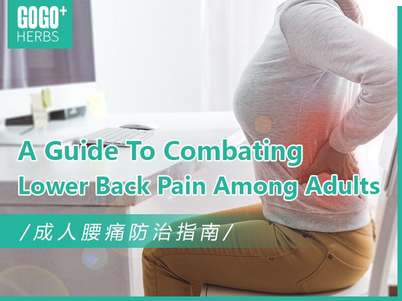 A Guide to Combating Lower Back Pain among Adults