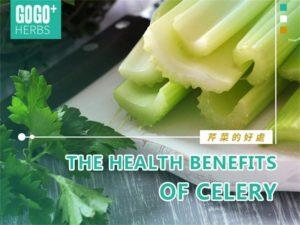 The Health Benefits of Celery