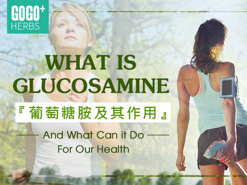 What is Glucosamine and What Can it Do For Our Health?