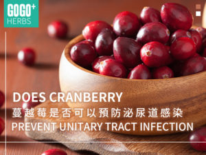 蔓越莓预防泌尿道感染