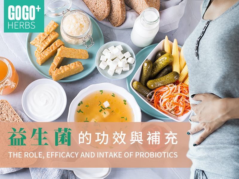 The Role, Efficacy and Intake of Probiotics